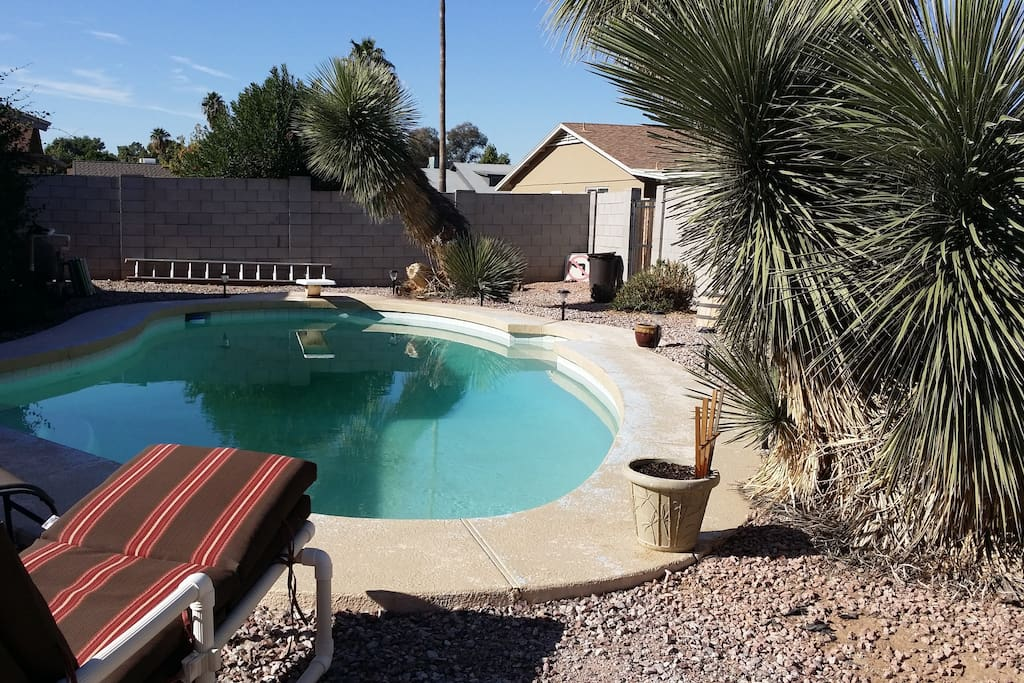 The backyard is a desert oasis, cozy and comfortable.