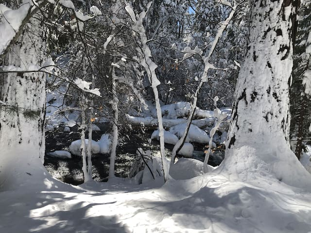 It's a winter wonderland experience!Skiing, snowboarding, sleighing or snowball fights,  minutes from Sierra Tahoe Ski Resort and less than 40 minutes to South Lake Tahoe.