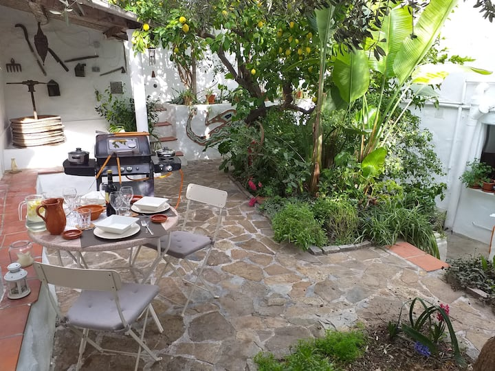 Casa Lluvia, Townhouse with idyllic shaded patio