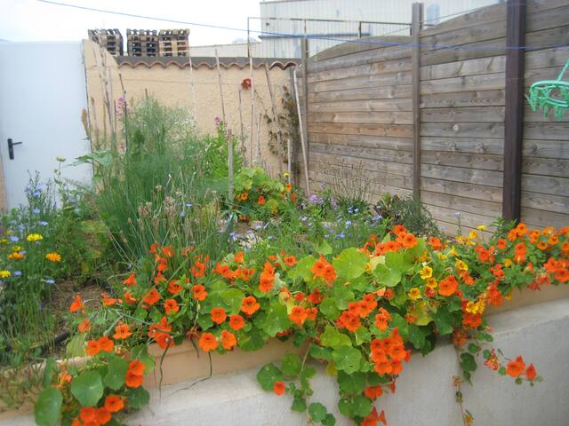 Chambre petite mais cosy sur jardin fleuri calme