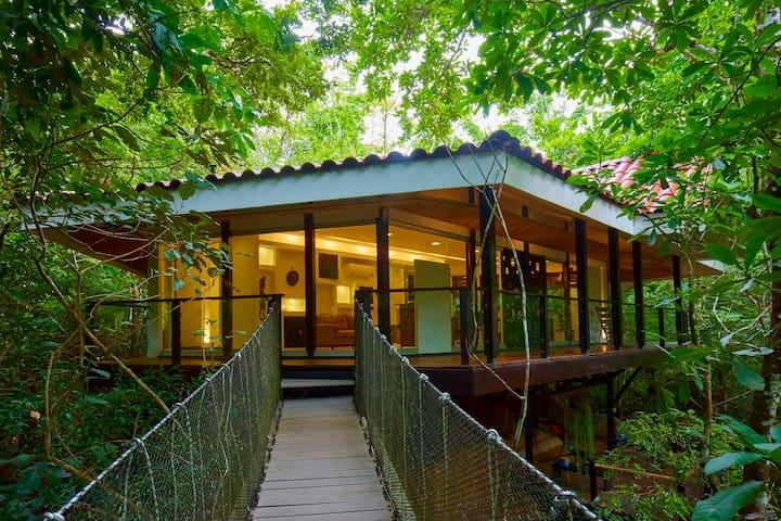 Casa del Árbol @Pueblo Verde