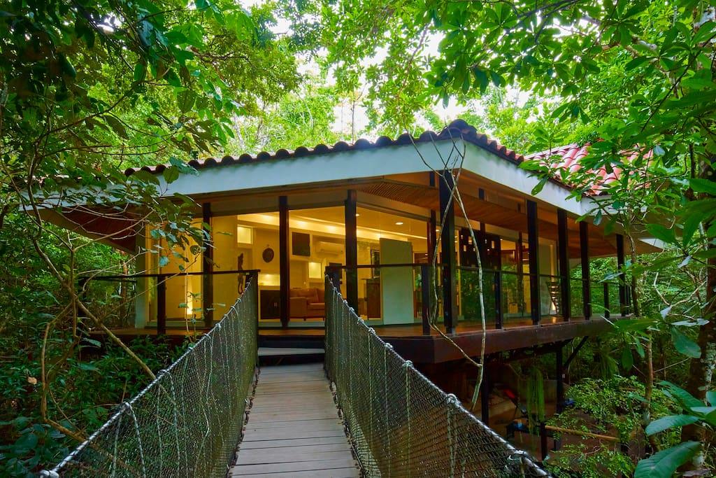 Casa del rbol pueblo verde casas en el rbol en for Alquiler casa arbol