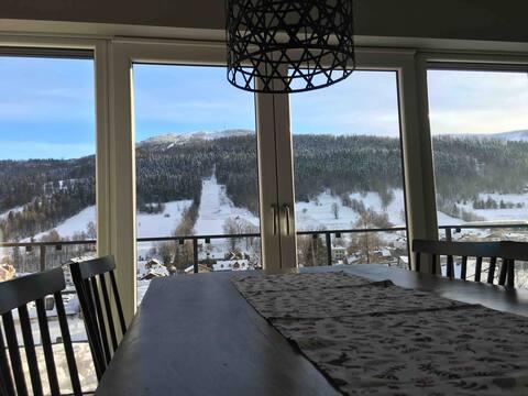 Ski & Bike Apartment