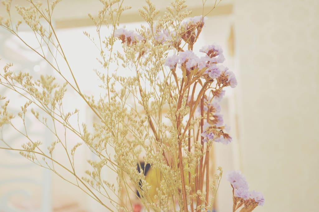 桌上的花儿