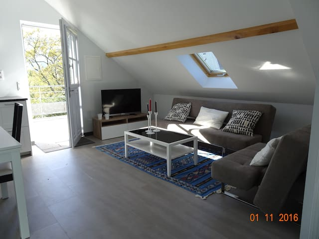 Studio en vallée d'Ossau - Louvie-Juzon - Apartment