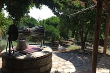 A traditional well outside the kitchen - The orchard in the background