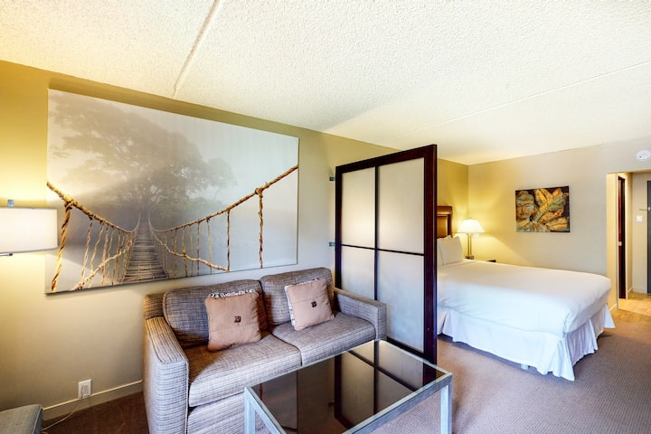 Ski-in/ski-out room w/ balcony, mountain views, WiFi & shared hot tub and pool!