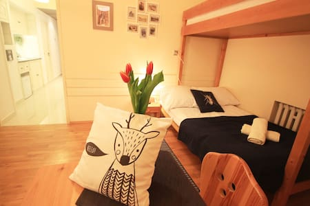 Studio, easy access-Kasprowy Wierch & Morskie Oko - Zakopane - Pis