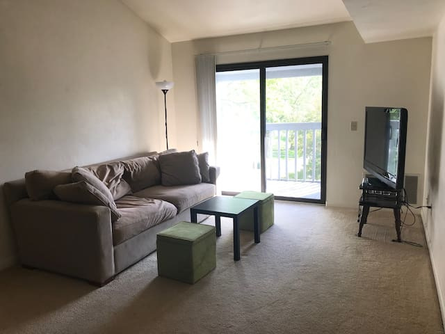 Loft style studio apartment near Virginia Tech