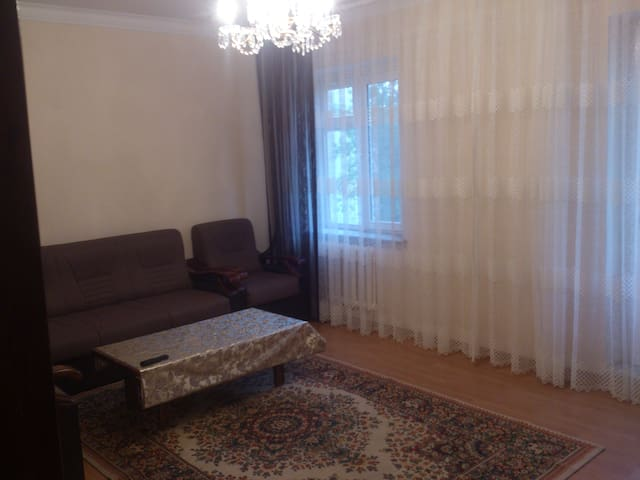 2 bedrooms apartment, in city center - Tashkent - Apartment