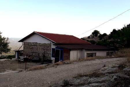 Kaş'ta en hesaplı tatilin adresi: Kandyba