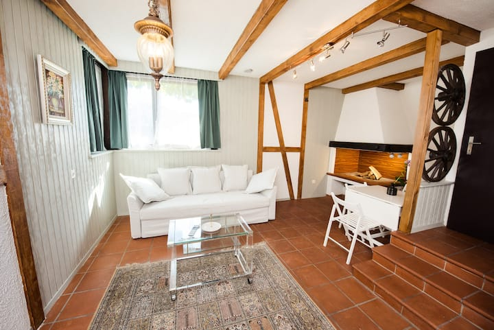 Nice apartment in a quiet area, near Luzern center