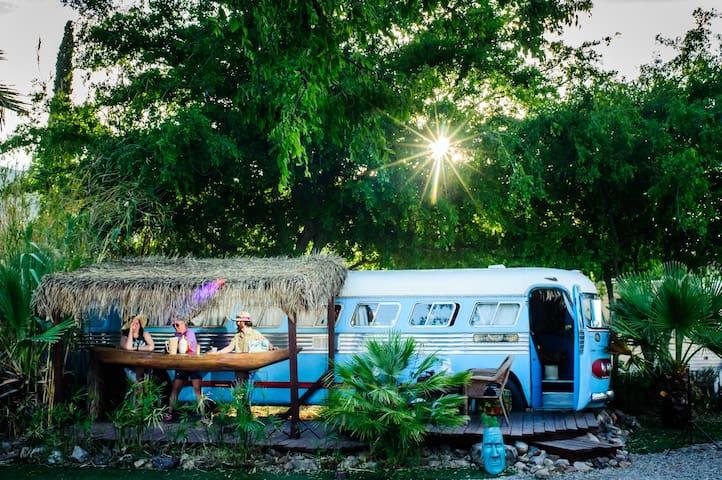 1947 Tiki bus at The Shady Dell