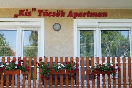 Tücsök Apartman