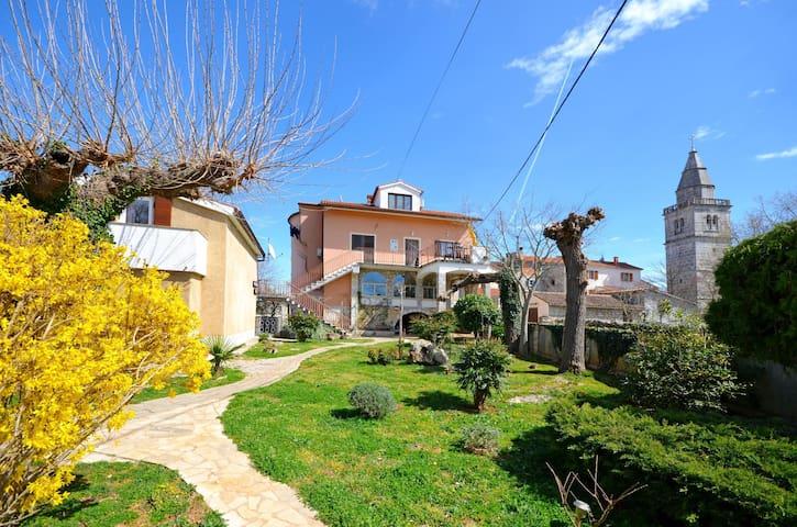 Apartment Petar (60991-A2)