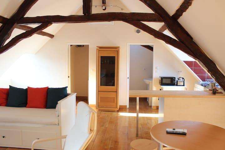 Charmant studio spacieux centre Montignac/Lascaux - Montignac - Apartment
