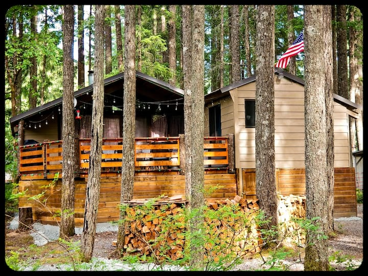 Nanook's Retreat- Pet Friendly Rustic Cabin w/ AC