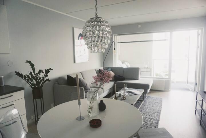 Modern flat near Oslo - Close to many facilities.