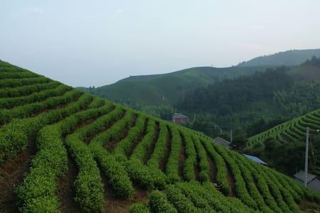 安吉乡野居茶园山景标准间 - Huzhou - Bungalow