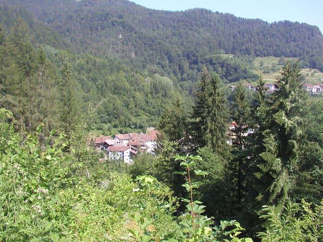 Casa Vacanze in Montagna (Carnia) - Ovaro (Frazione Muina)