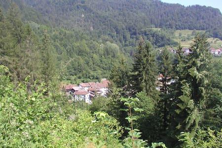 Casa Vacanze in Montagna (Carnia) - Ovaro (Frazione Muina) - Rumah