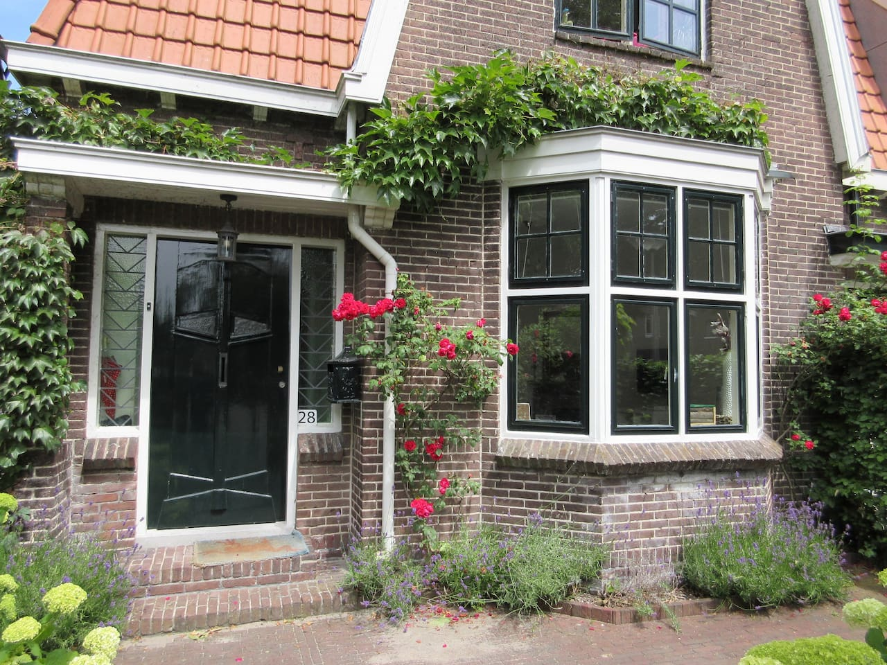 Our lovely semi attached typical Dutch house from 1922, with roses all over.