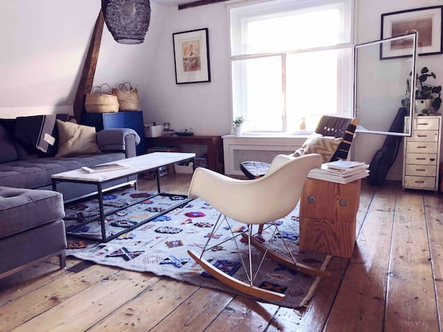 Beautiful, historic apartment in center of Haarlem