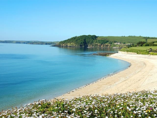 Stunning Sea View Apartment - Falmouth