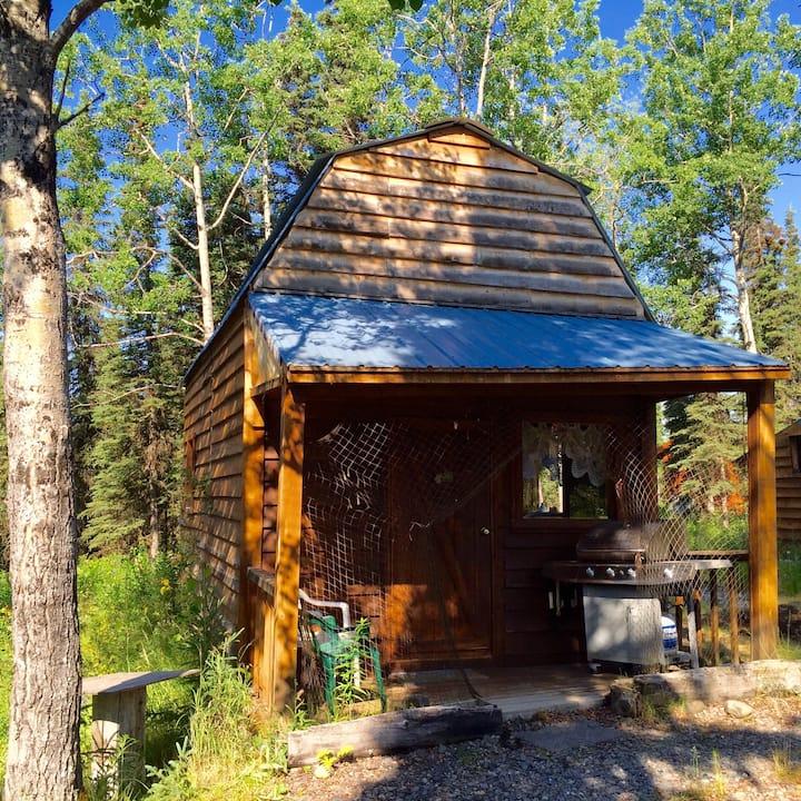 Forget-Me-Not cabin - Kasilof