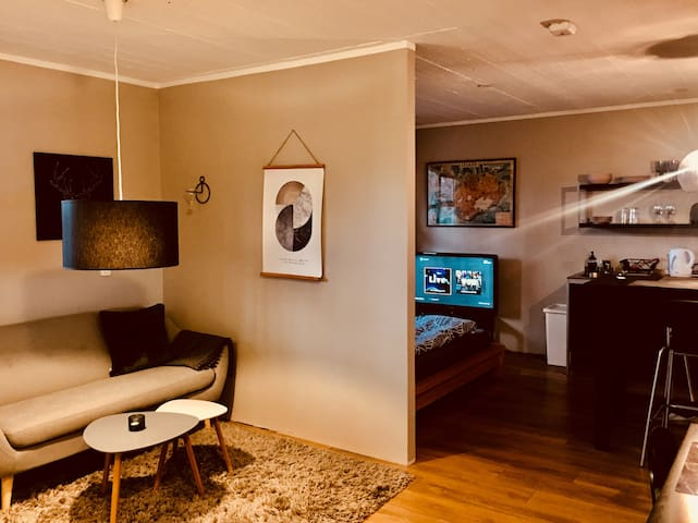 Family friendly apartment 2 located in Reykjavík