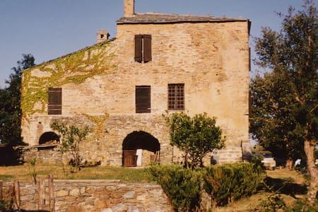 Fomicaccia - Valle-di-Campoloro - Villa