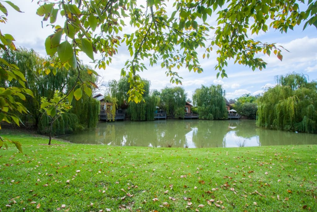 Lakeside villas nestled together at Perricoota Vines Retreat