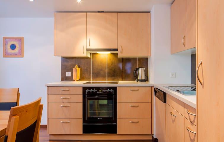 Moderne Küche mit Geschirrspüler, Backofen und Ceran-Kochfeld