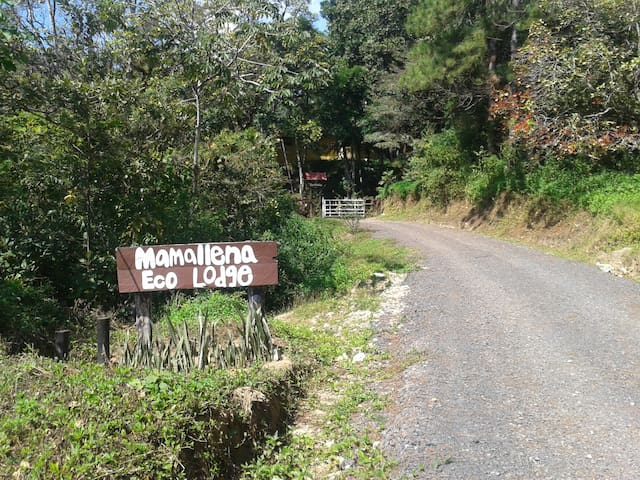 Mamallena Eco Lodge - Anton Valley - Huis