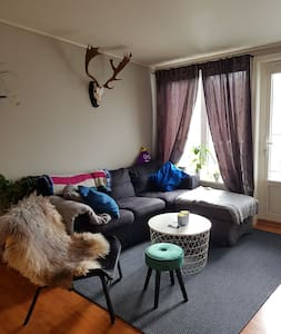 Small apartment close to Oslo Airport Gardermoen