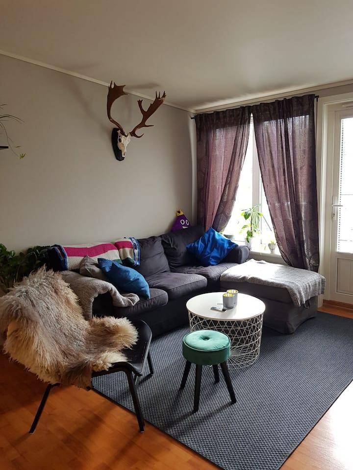 Small apartment close to Oslo Airport Gardermoen