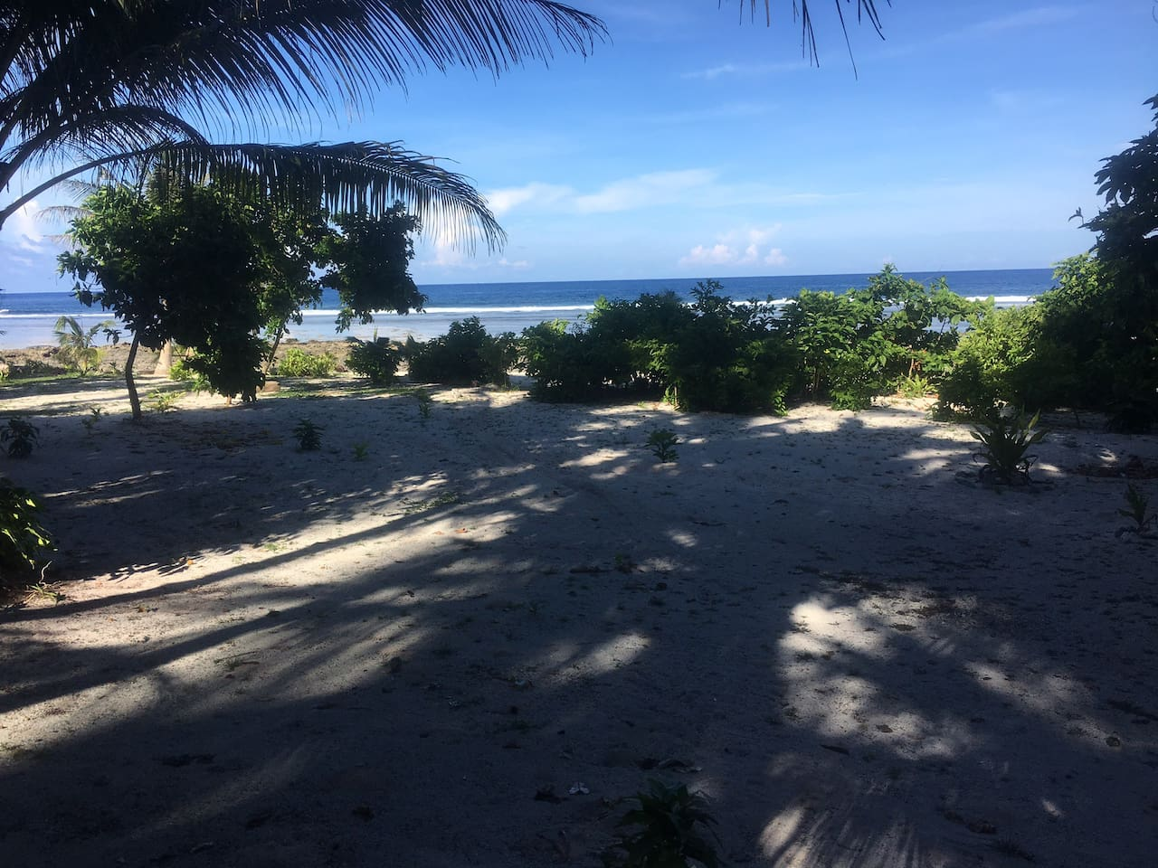 The spectacular View of the sea, surf and beach from infront of the cottages
