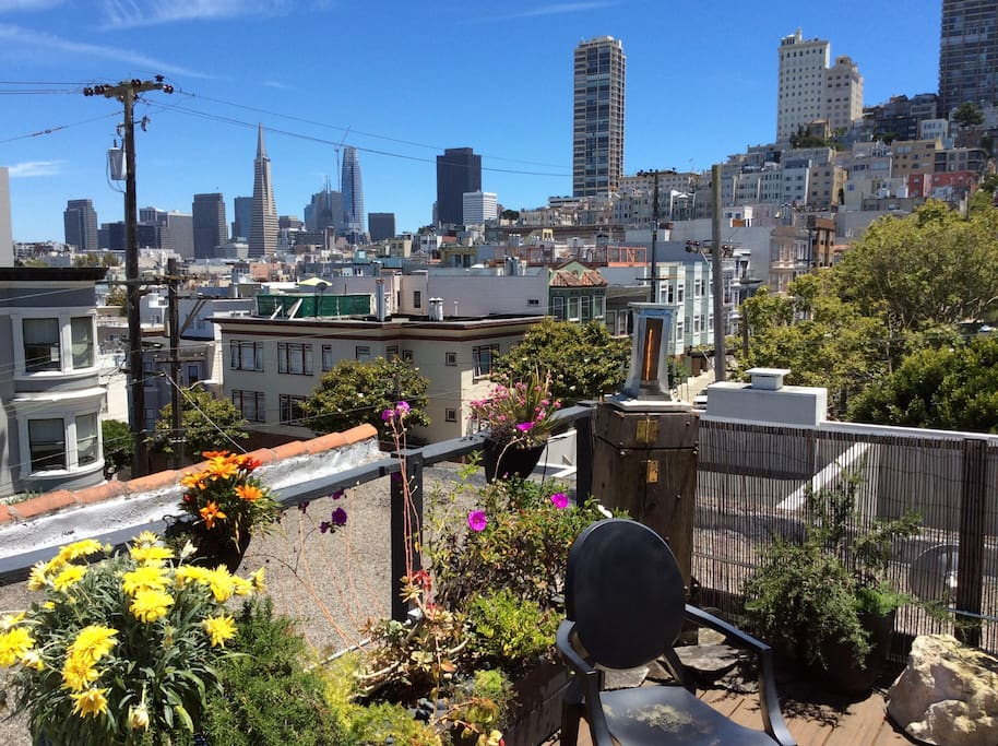 Gorgeous view roof deck with lush plantings.