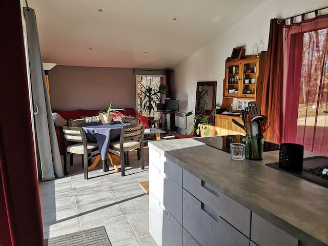 La pièce à vivre avec les coins  cuisine et salle à manger