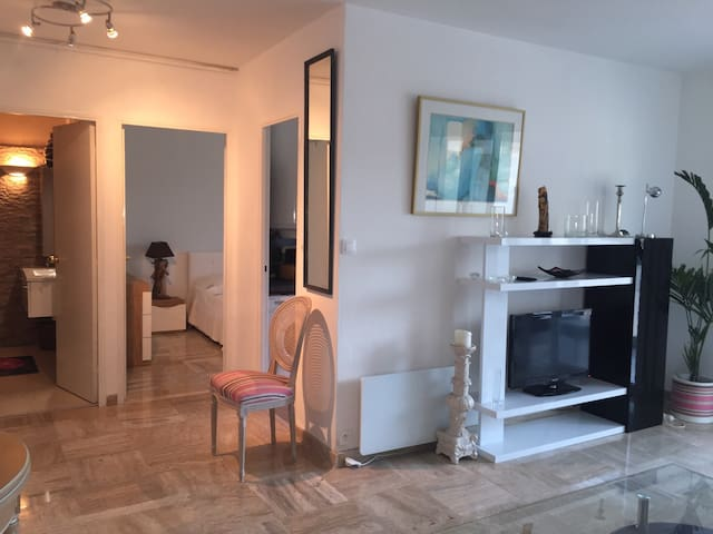 T2 rénove luxe - Cannes - Appartement
