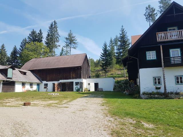 Idyllischer Bauernhof im Waldviertel