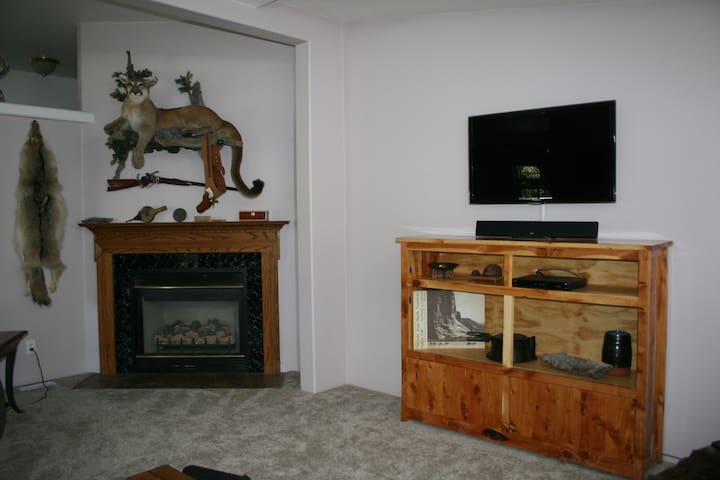 Shared spaces includes a big screen TV in the family room