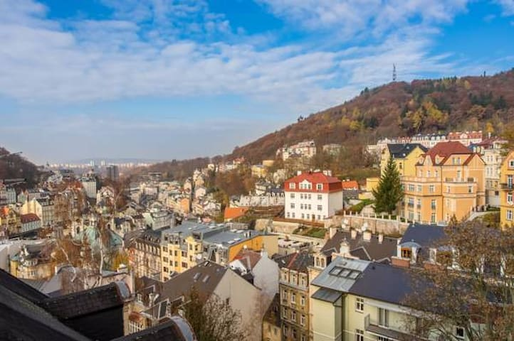 1BD Loft with a stunning view of Karlovy Vary