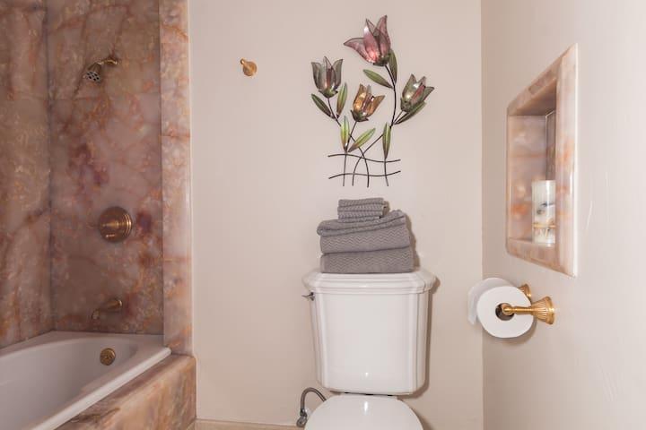 Alabaster Marble Bath Tub & Shower