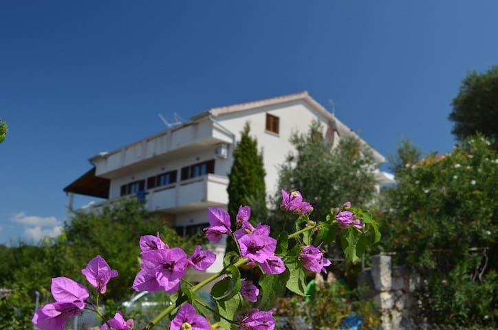 Apartments Josip - Lun - Flat