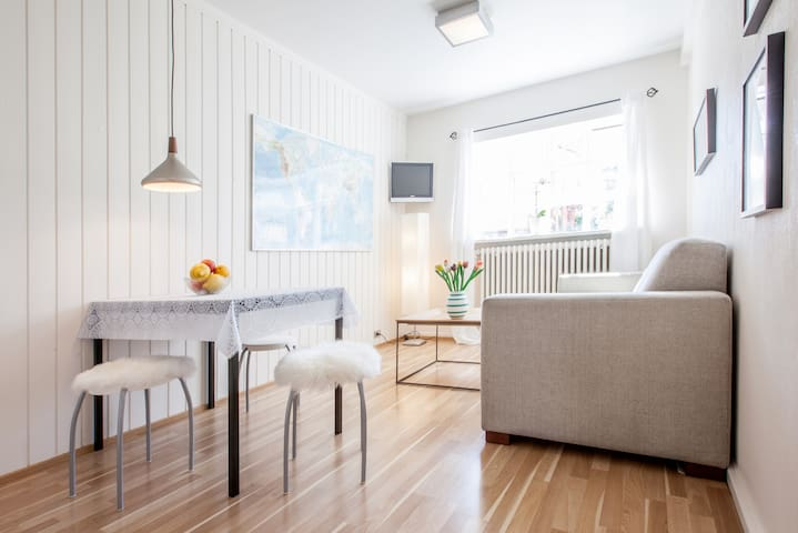 Nice,Cosy,kitchen,center,free wi-fi,free parking, - Reikiavik - Apartamento