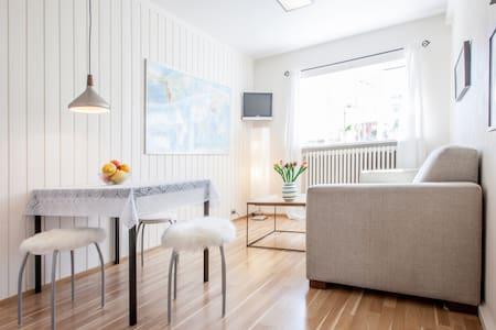 Nice,Cosy,kitchen,center,free wi-fi,free parking, - Reykjavík - Wohnung