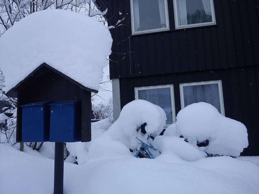 The snow is piling up