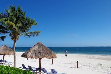 Apartamento Chikito 1Bedroom Beach Front - Puerto Morelos