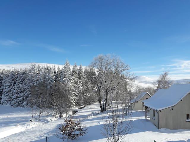 Gîte au cœur de la nature entre Cantal et Puy Dôme